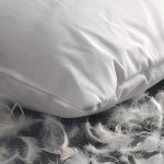 Goose feather pillows